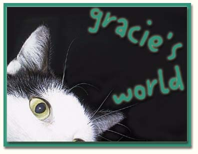 Welcome to Gracie's World!