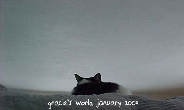 Gracie's World January 2004