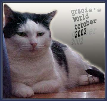 Gracie's World, October 2002