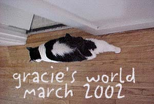 Welcome to Gracie's World