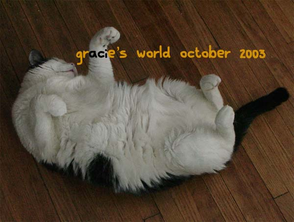 Gracie's World October 2003