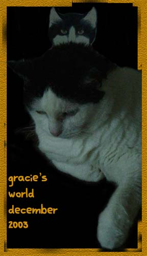 Gracie's World December 2003